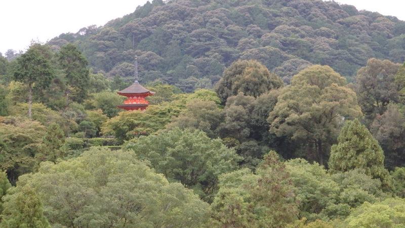 清水寺から見えた子安塔