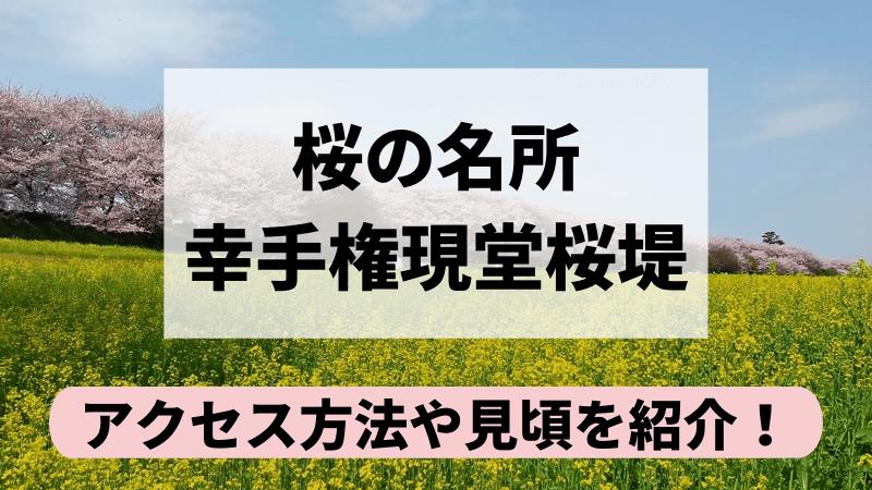 幸手権現堂桜堤へのアクセス方法や見頃を紹介